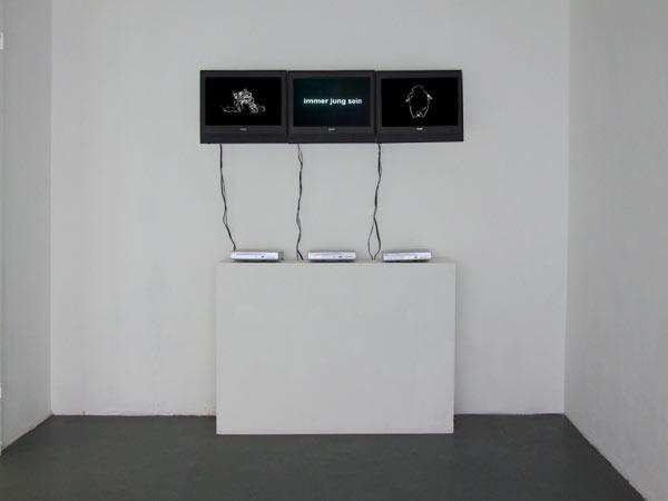 Hybrides-Figures-3